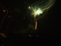 medusa-verde