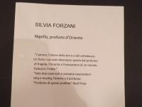 silvia-forzani1-copia