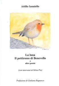 17 giugno Copertina la luna il pettirosso di Benevello disegno di Luciano De Carolis
