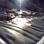 ...si stempera / nella neve / il liquefatto / argento / della luna...