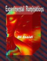 Ali Znaidi's Experimental Ruminations