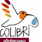 Immagine logo colibrì