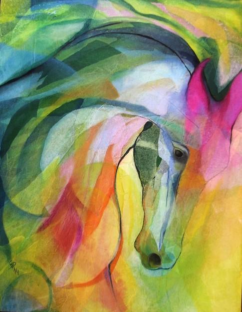 cavallo-cm-90-x70
