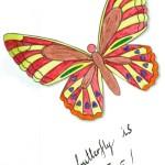 I trap a butterfly evidenza