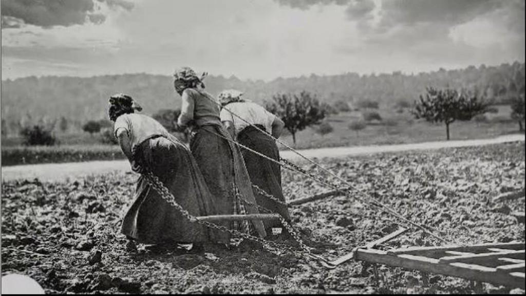 Contadine al lavoro nei campi uno