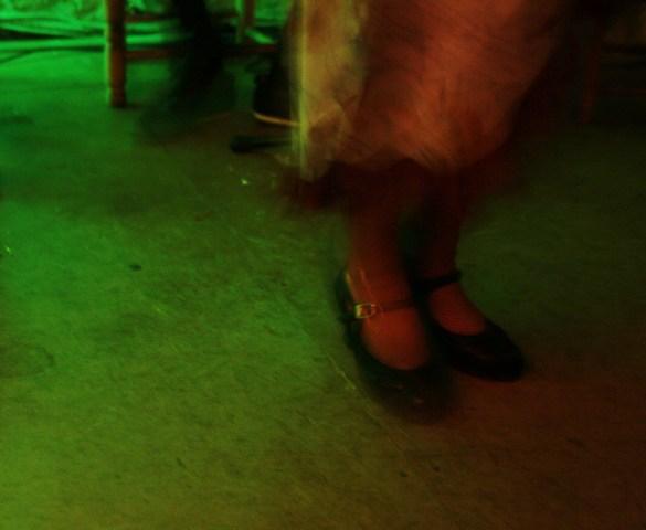 Flamenco_fiammante_Gaia_Gulizia
