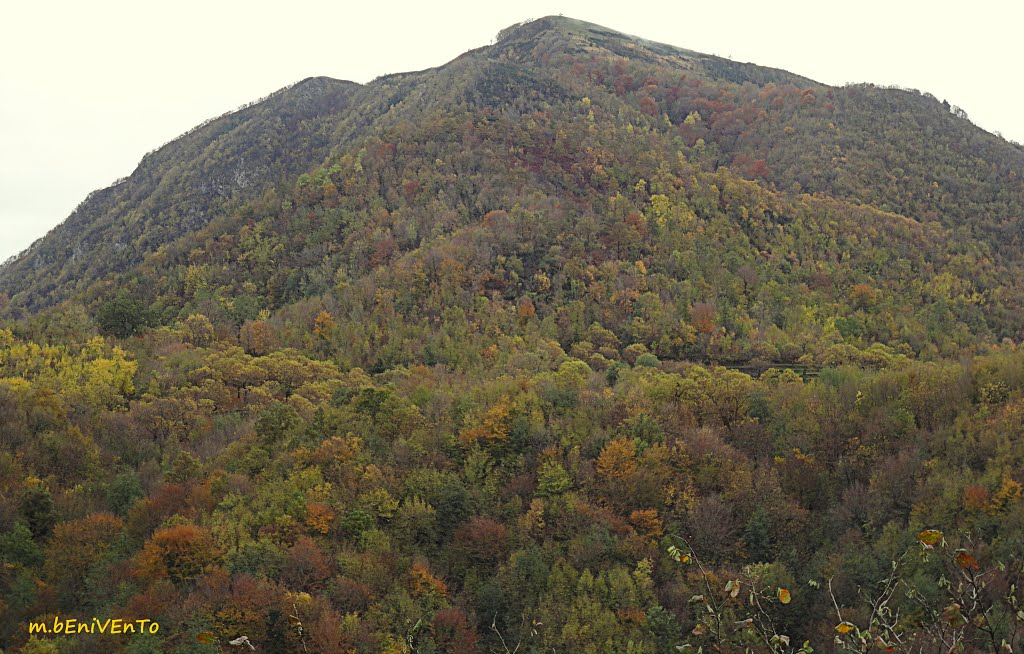 Castiglione del Genovesi (Monte Monna)