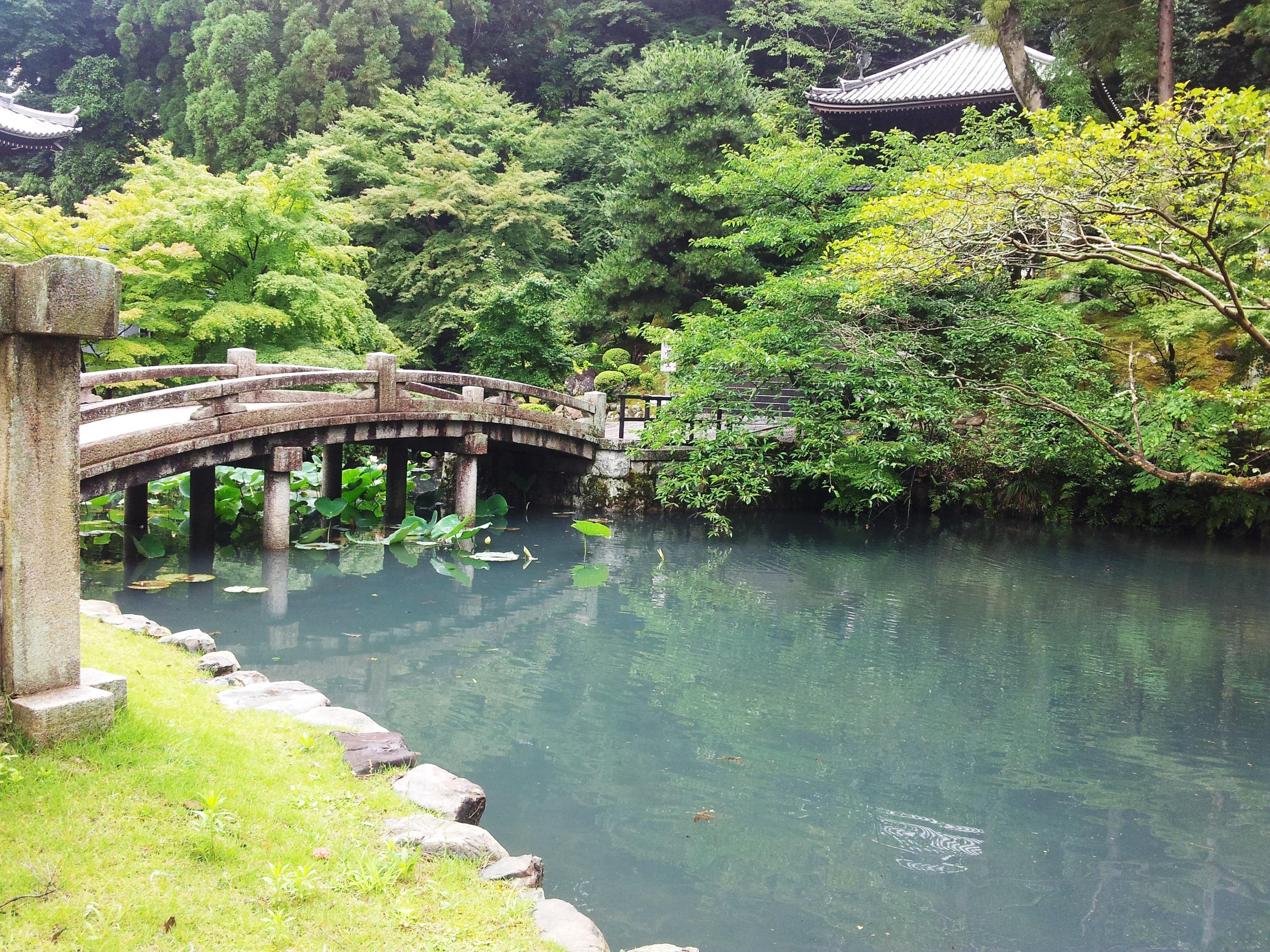 [IMG]http://www.margutte.com/wordpress/wp-content/uploads/2015/09/Kyoto7cop.jpg[/IMG]