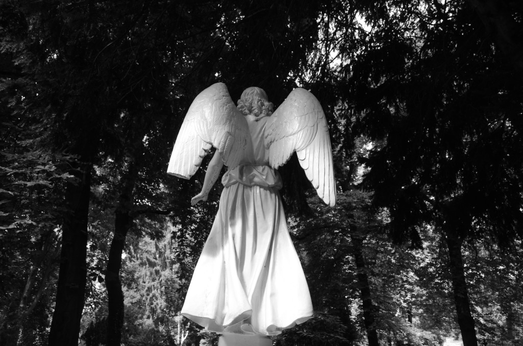 Bernauer Straße. Sophien Friedhof. Ala spezzata, 1 agosto 2013. Fotografia: Elda Papa