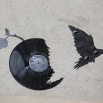 disco colomba