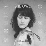 SheOwl-AnimalEye-websize