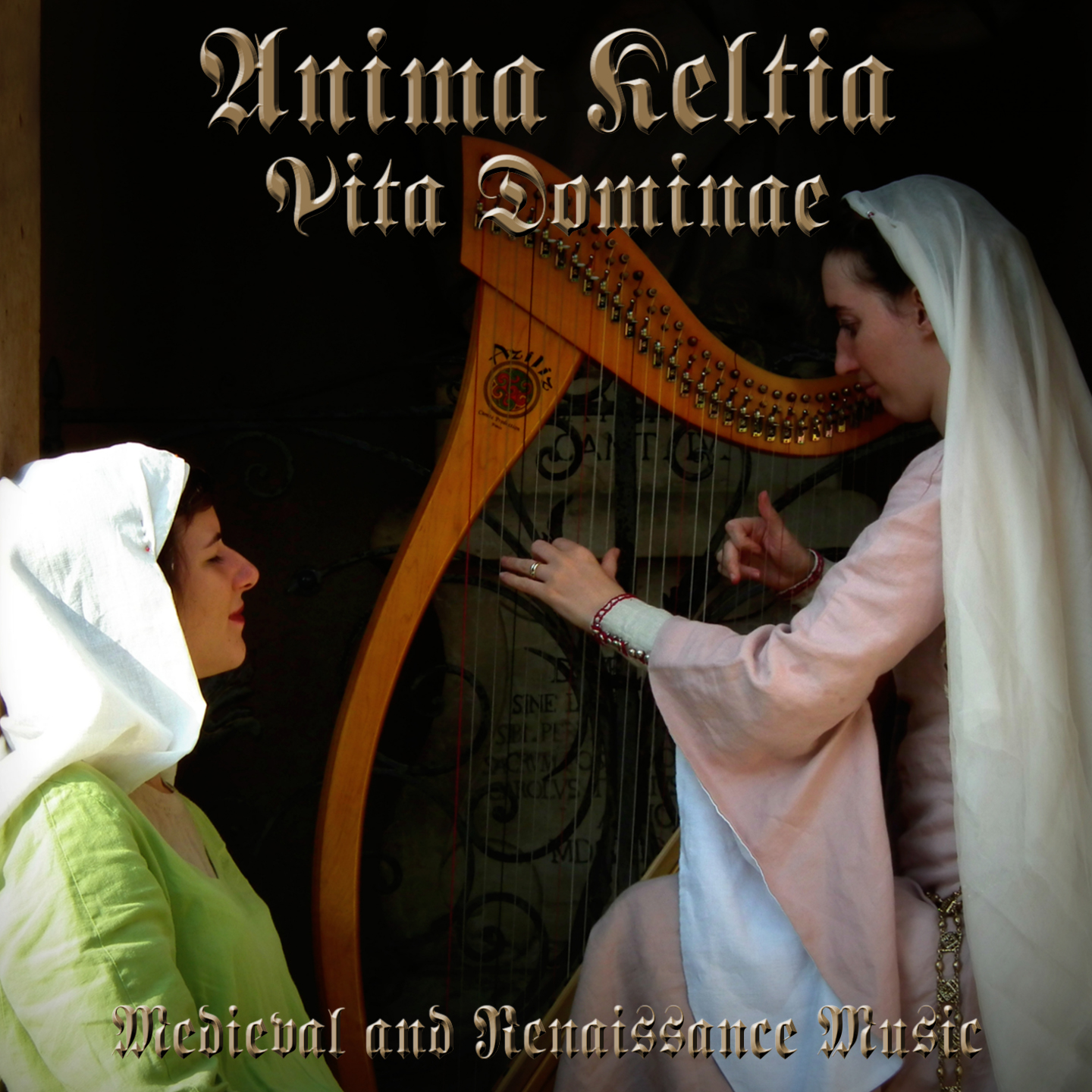 Vita Dominae Cover