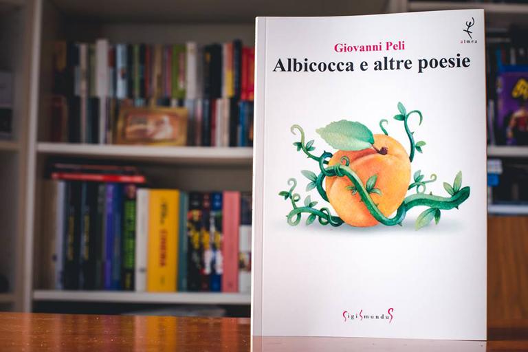 albicocca-foto01