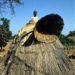 Benin_208 uno