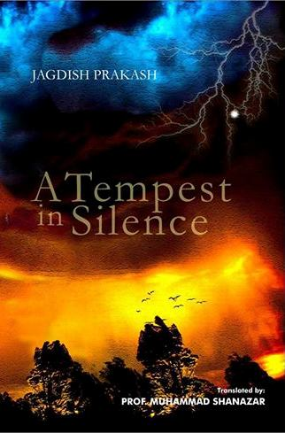 A tempest in SilenceCover