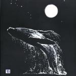 balena 001