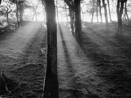 Ron Rosenstock, Sunset at Sheeffrey, Co. Mayo, Ireland, 1986 - The Culturium