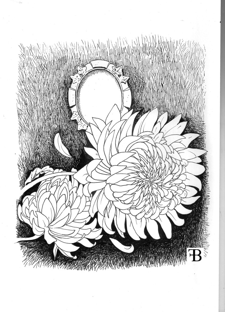 crisantemi 001