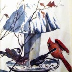 uccelli - inverno