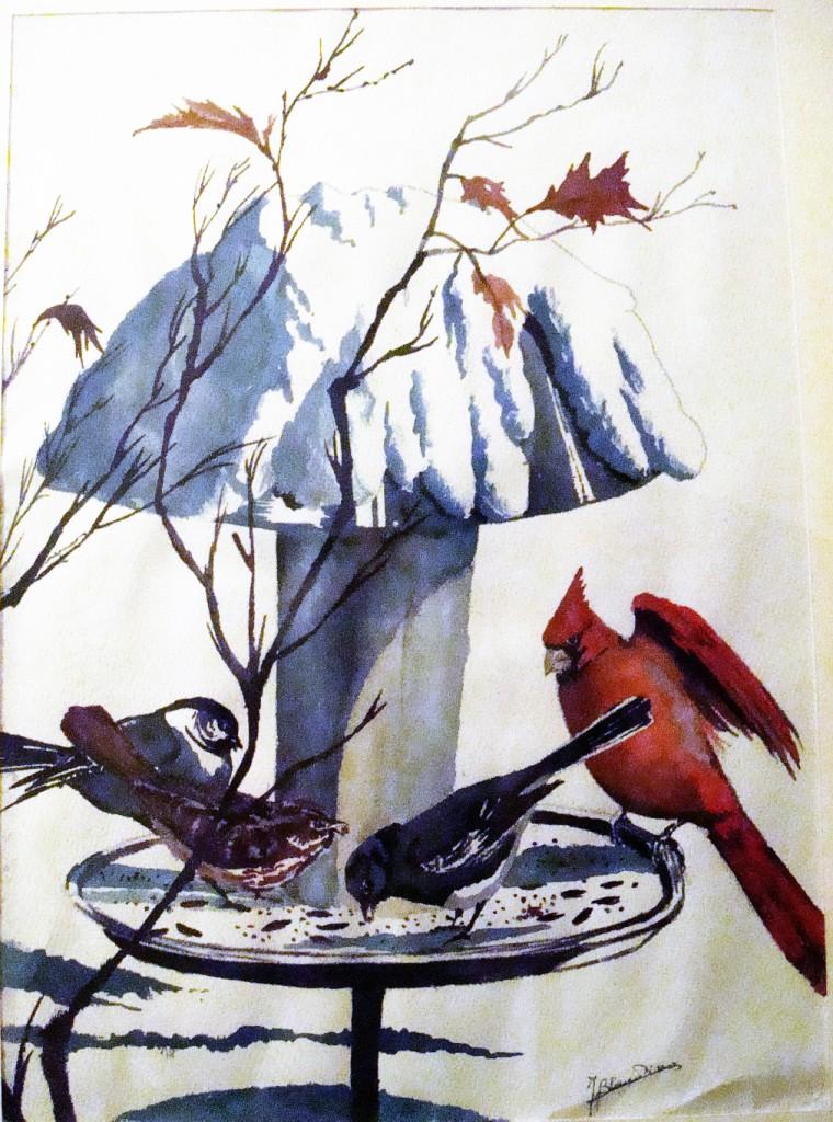 uccelli - inverno (2)