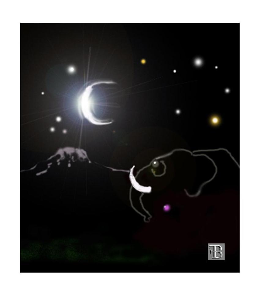 elefante e lucciola (2)