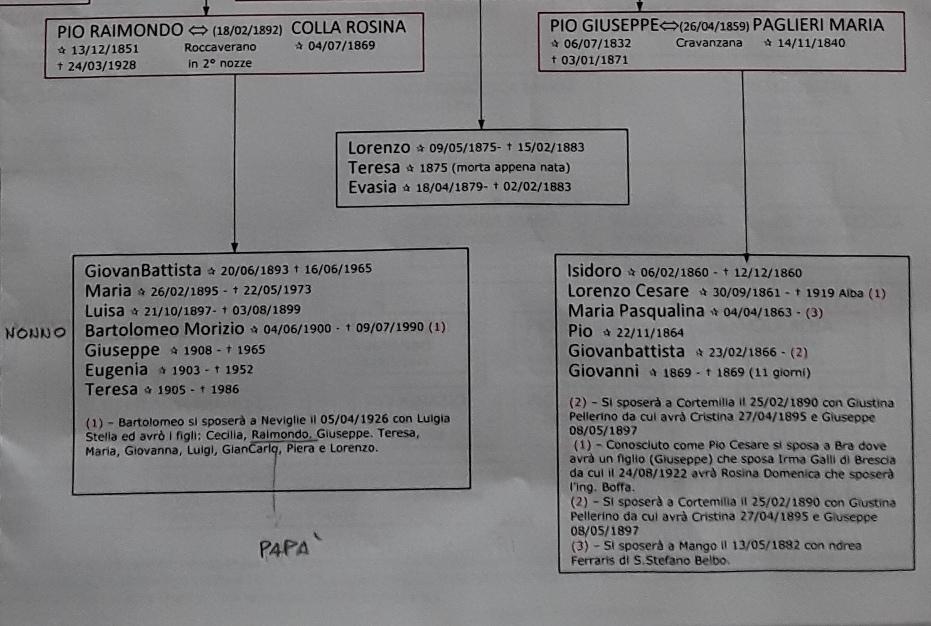 Estratto dell'albero genealogico della famiglia Pio, compilato da Flavio Monte, che parte dal 1595