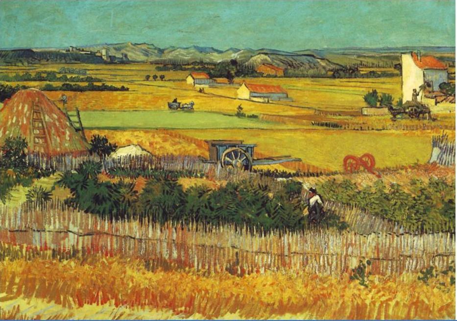 Vincent Van Gogh, Campi di grano a La Crau, 1888