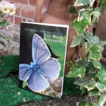 the-blue-butterfly-evid