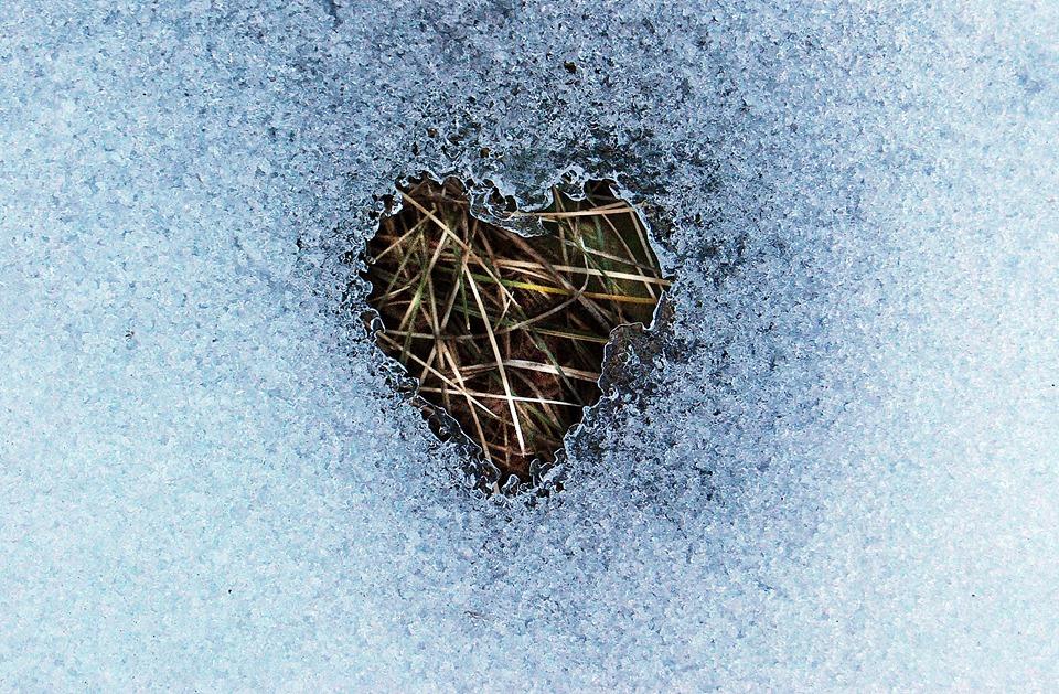 cuore-ghiaccio