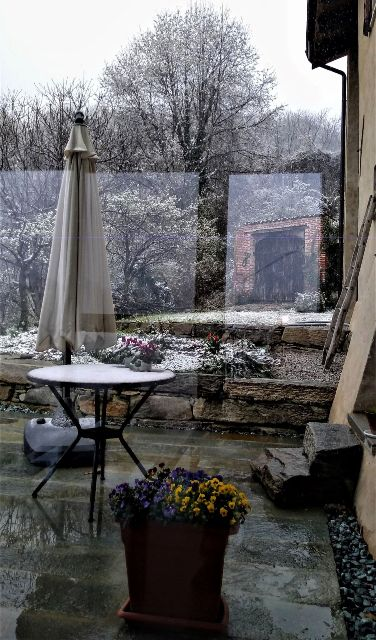 Spring snow from indoors