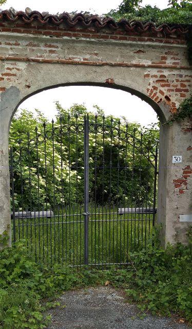 sambuco-attraverso-cancello-ii