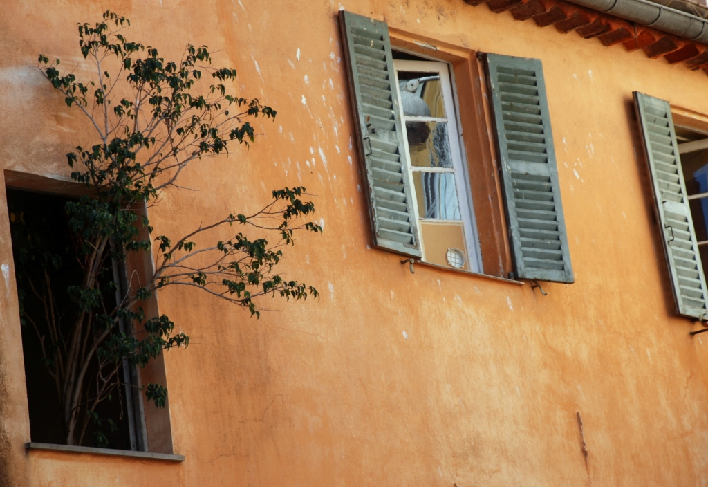 finestre-bonino-x-maio-2