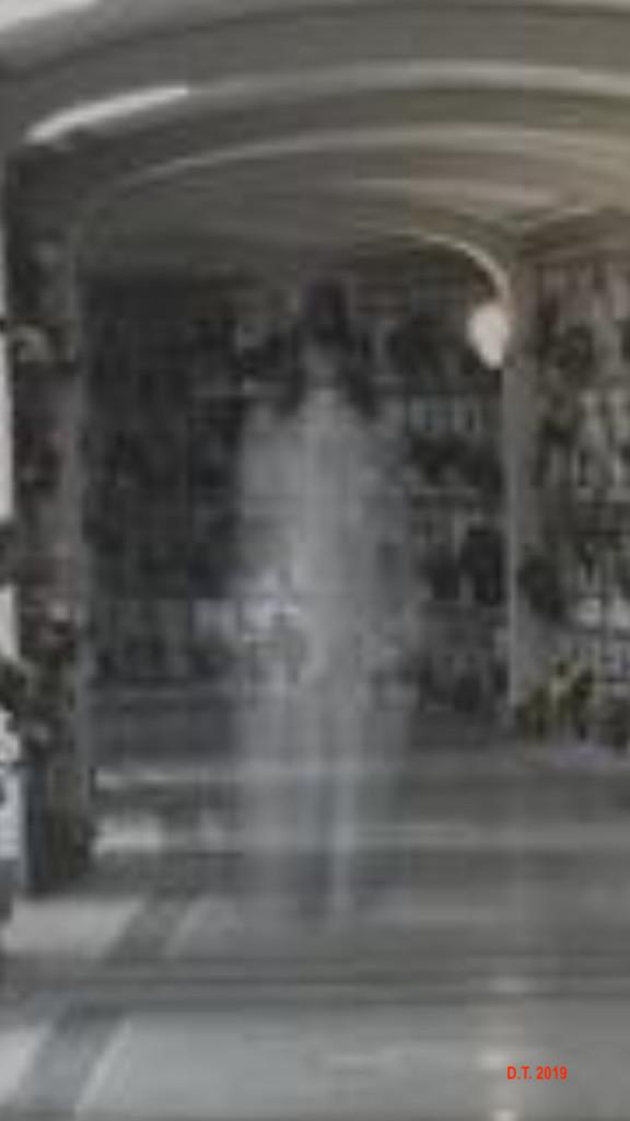 fantasmi-a-savona-2