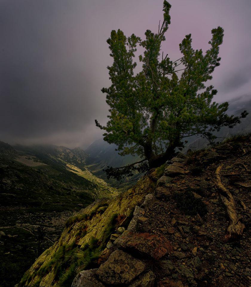Photo: Roberto May