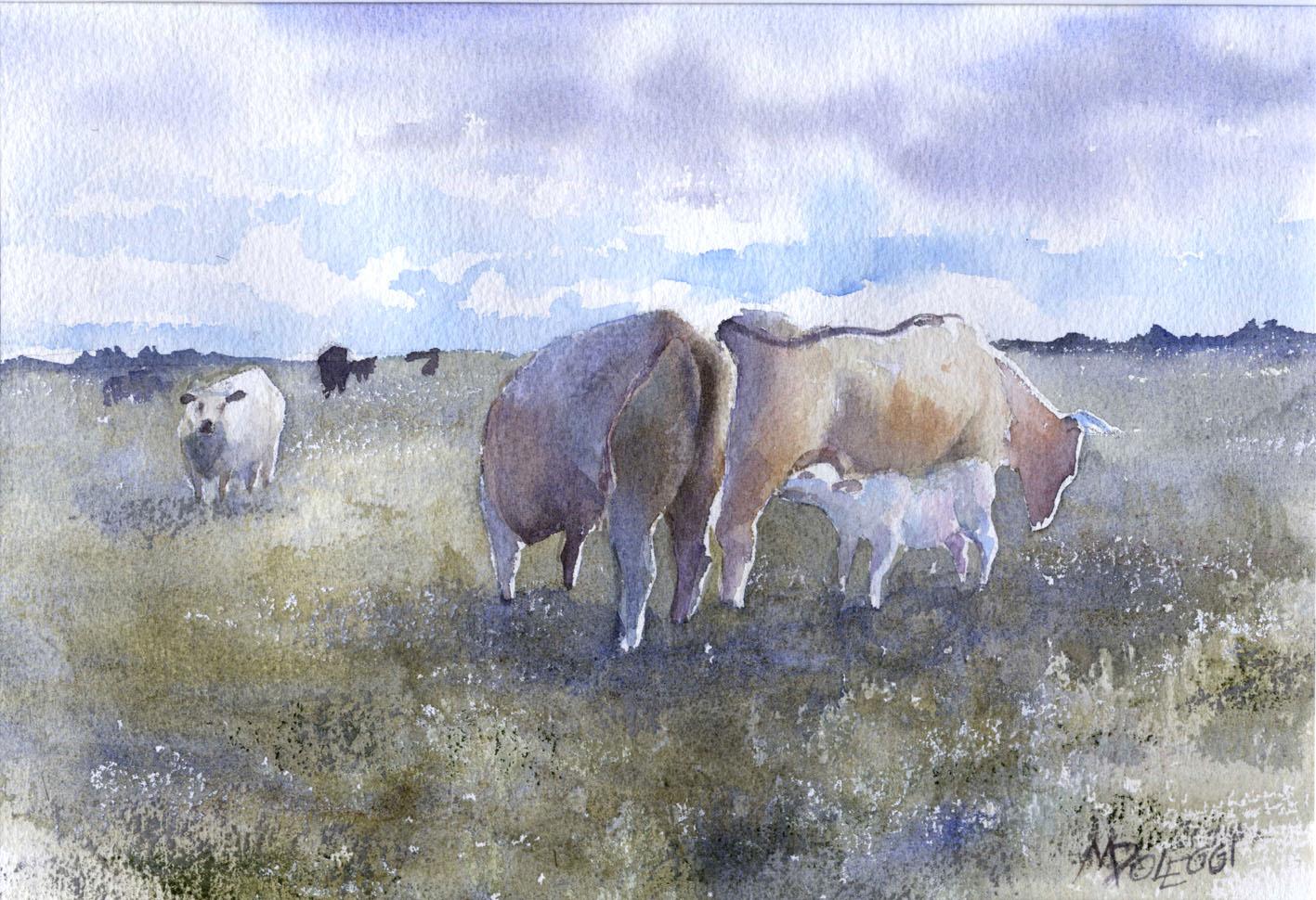 poleggi-mucche-campagna-lussemburghese-m-poleggi